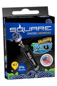 Картридж для Square E-Hose «Ежевика»