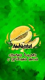 Табак B3  Ambrosia 50 гр